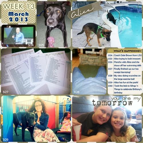 2013_week_13