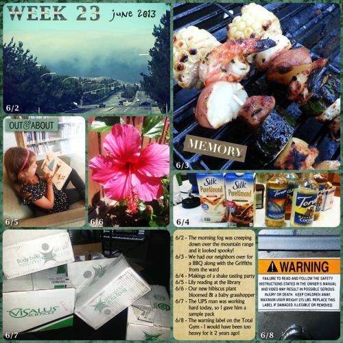 2013_week_23
